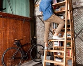 Higher ground - bookshelf with pull out ladder