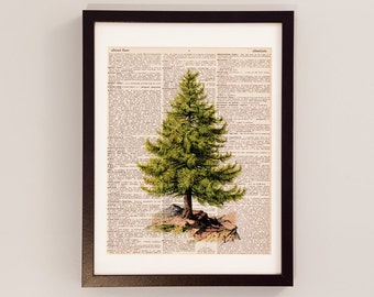 Vintage Christmas Tree Art Print - Christmas Decor - Print on Vintage Dictionary Paper - Pine Tree - Christmas Art