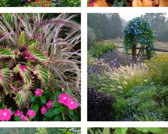 Garden Photo Notecards Set of 6 Vertical Images