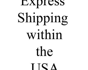 Priority Express Shipping within the USA