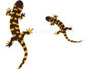 Kids Room Ar t- Lizards Print  - Wall decor - art print  -  Animal Art Print, -  kids wall art - kids poster - kids art print