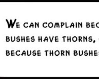 Wall Quote - Abraham Lincoln - We Can Complain Because Rose Bushes Have Thorns, or Rejoice Because Thorn Bushes Have Roses.