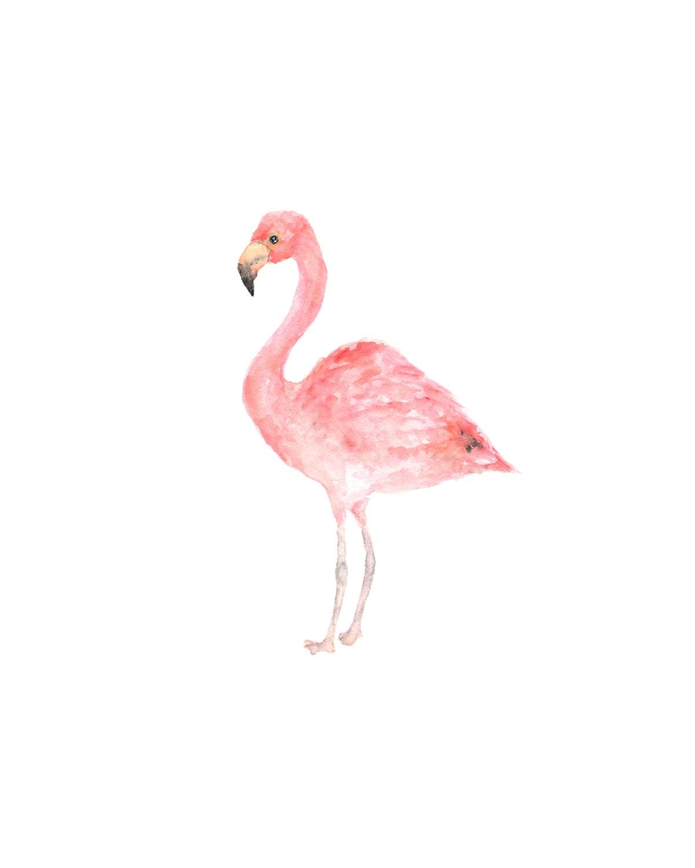Watercolor bird bird painting watercolor painting bird art