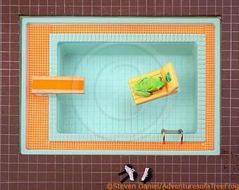 Sunbathing Frog in Swimming Pool, Skinny Dipping, Summertime