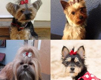 6 Large Dog Hair Bows Yorkie Shih Tzu Maltese Choose From