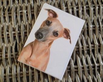 Whippet Dog photo greeting card