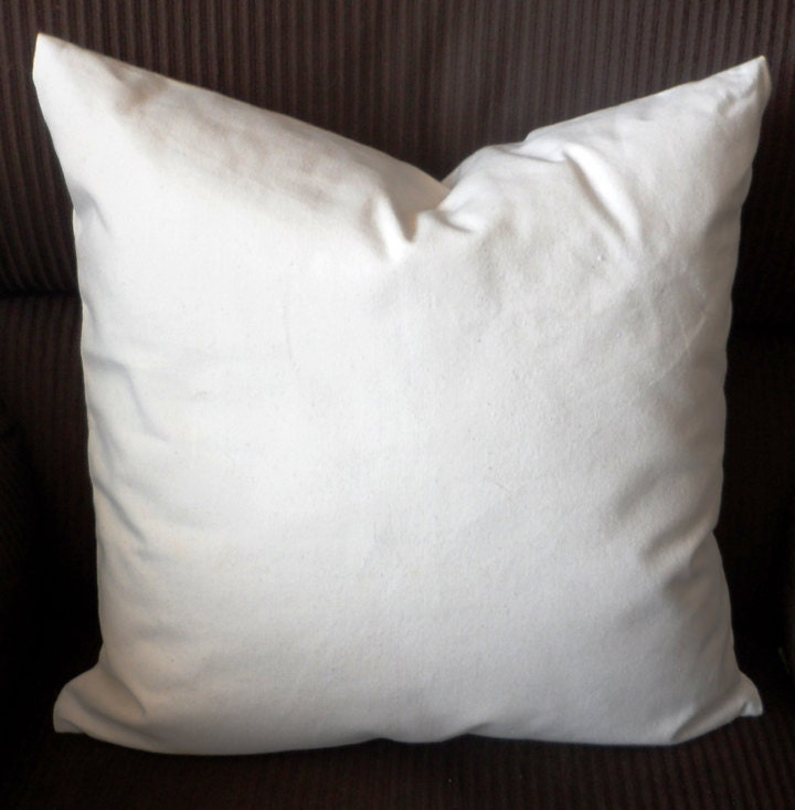 100% Organic Cotton Canvas Throw Pillow Case Cover 18 X 18