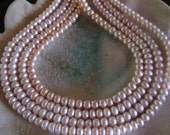 Very nice 6x3mm Natural Button Fresh Water Pearl Bead Strand