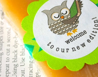 Book Theme Baby Shower Favors, Soaps With Welcome To Our New Edition Label