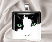 Tuxedo Cat - Square Glass Tile Pendant Necklace -  Cat Pendant