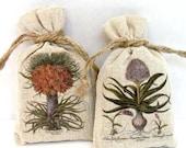 Balsam Fir Sachets Vintage Botanical Flowers Gardener's Housewarming Gift Pair