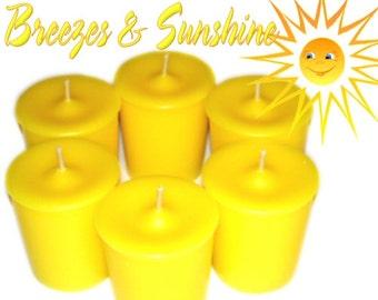6 Breezes and Sunshine Votive Candles Citrus Floral Summer Flower Scent