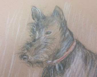 original scottie dog drawing on brown paper supra color pencils vintage look matted 8x10