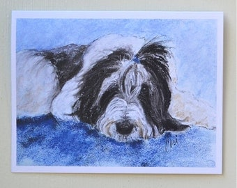 Bearded Collie Dog Art Note Cards By Cori Solomon