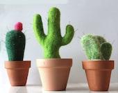 Cactus pin cushion Needle Felting Kit