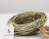 Natural Bird Nest 4 inch