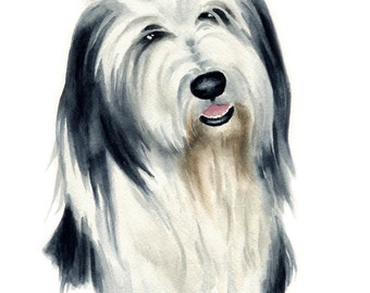 BEARDED COLLIE Dog Art Print Signed by Artist DJ Rogers
