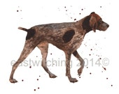 GERMAN SHORT HAIRED Pointer, Print, Pointer painting, dog art prints