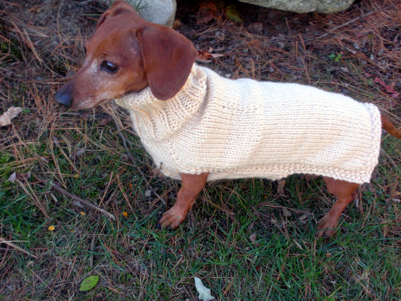 Small Dog Sweater PDF PATTERN Mini Dachshund Doxie Sweater