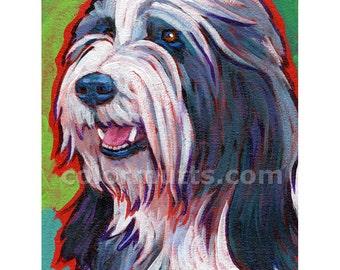 BEARDED COLLIE Dog Original Portrait Art Painting 6x8 by Lynn Culp