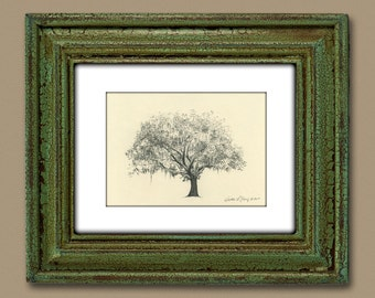 Gordonston Savannah Live Oak Tree Pen and Ink Drawing