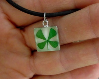 REAL 4 Leaf Clover Pendant - White Square on 16 inch black cord - st. Pattys, Lucky, Good Luck, Irish, Real four leaf clover, Luck