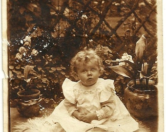 Antique Victorian Photo Darling Little Girl With Blonde Curls Wearing Long White Gown In Garden Vintage Photograph
