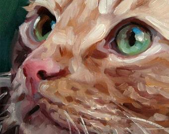 "GreenEyedTabby, custom Pet Portrait Oil Painting by puci, 10x10"""