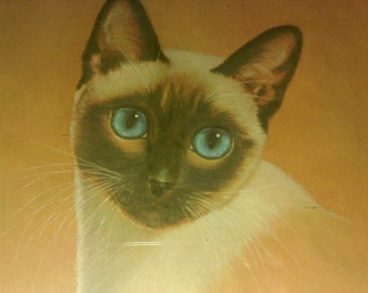 FREE SHIPPING vintage print siamese cat picture artist signed (Vault 7)