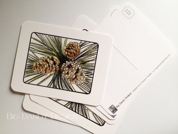 Pinecone Postcards Set of 6, 12 or 20