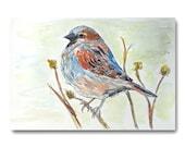 Sparrow Bird Watercolor Painting 6x9 Contemporary Fine Art Backyard Songbird original nature art nursery decor art for any room