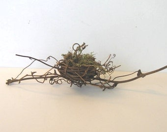10 Bird's nest place card holders, Wedding place card holders, Baby Shower party favors, Name tag holders, rustic twig table number holders