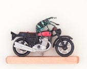 Insect Art Weevil Knievel Real Beetle Riding Motorcycle Taxidermy