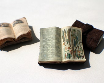 Miniature Open Book --- Feathers