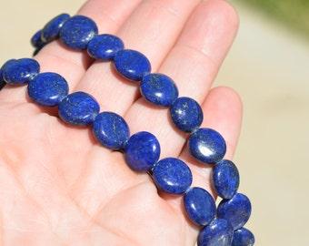 15 Lapis Lazuli 12mm Flat Round Beads BD714