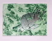Turtle (Original Collagraph Hand Pulled Artist Print)