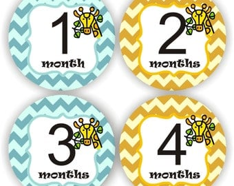 Baby Stickers - Baby Month Stickers - Baby Boy Monthly Stickers - Baby Shower Gift - Giraffe Baby Month Stickers