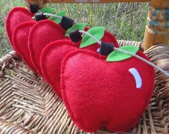 How Bout them Apples.  Teacher Eco Friendly Felt Apple Garland