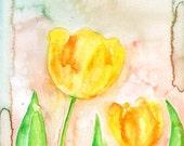 Yellow tulips-wall decor- Nature art-Original watercolor painting 8x10 inch