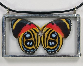 Real Butterfly Necklace - Paulogramma Peristera - Glass And Lead Free Solder