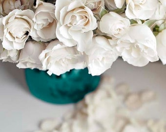 Flower Photography, Roses, White, Blue, Girl Nursery Decor, Teal, Bedroom Wall Art, Paris Decor