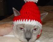 Handmade Crochet Santa Elf Cat Hat Cap Beanie