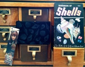 Black Seashell cosmetic bag