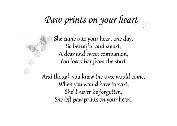 Items Similar To Pet Loss Sympathy Card Paw Prints On Your