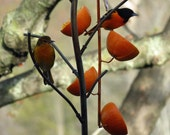 Oriole Feeder, Gardening, Feeders, Copper Art Vine Multiple Orange, Copper Bird Feeder, Fork Style