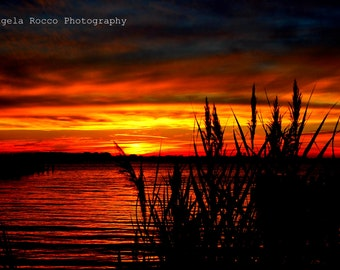 Sunset by the Bay Part 2 8X10 Print, Matt, Back, and Bag