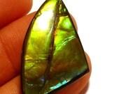 Ammolite Cabochon Stabilized Vibrant Red Green Designer Hand Cut Korite Ammonite Alberta Canadian Precious Gemstone Pendant Rare Opalized