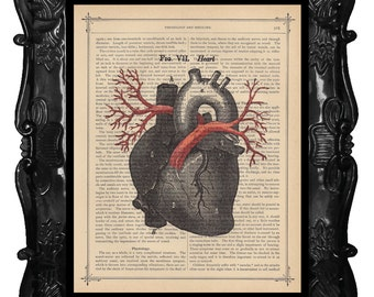 Heart Arteries art print anatomical heart veins print medical student gift heart anatomy dictionary art print antique music page art