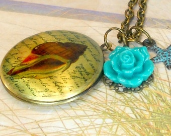 Secret Treasure Genuine Sea Glass Jewelry Antique Brass Shell Locket Necklace Teal Rose Pendant And Starfish