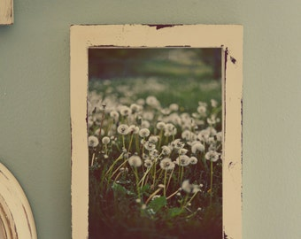 Dandelion Photo in Rustic Frame